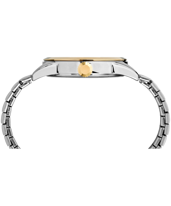 Briarwood Expansion Band Two-Tone/Silver-Tone (large)